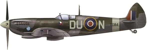 Spitfire_TE184 DUN