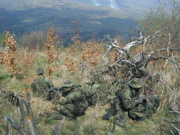 Czech Army FAC