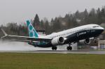 Boeing 737 800 MAX  001