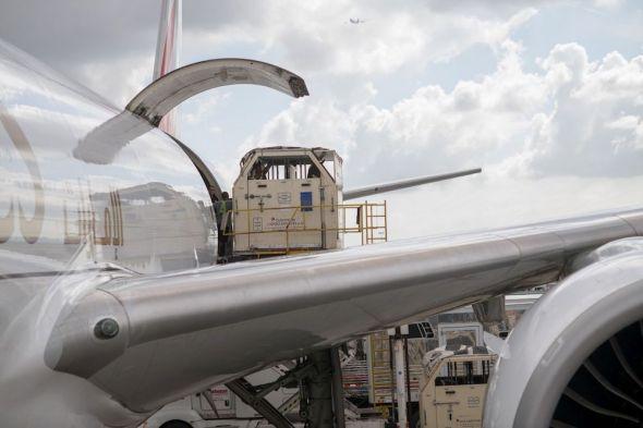 Emirates SkyCargo nakládání koní