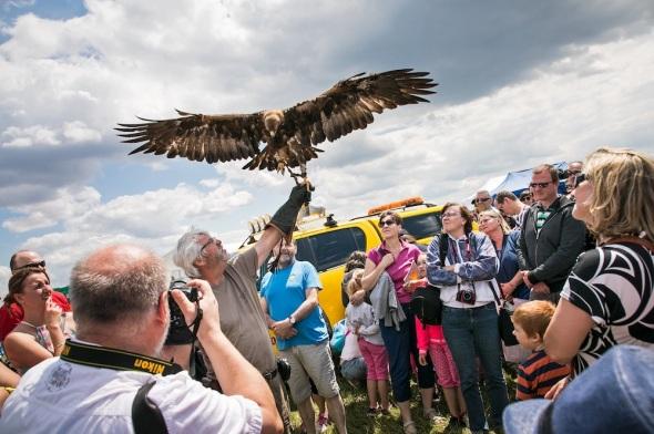 Letiště Praha Runway Park ornitolog